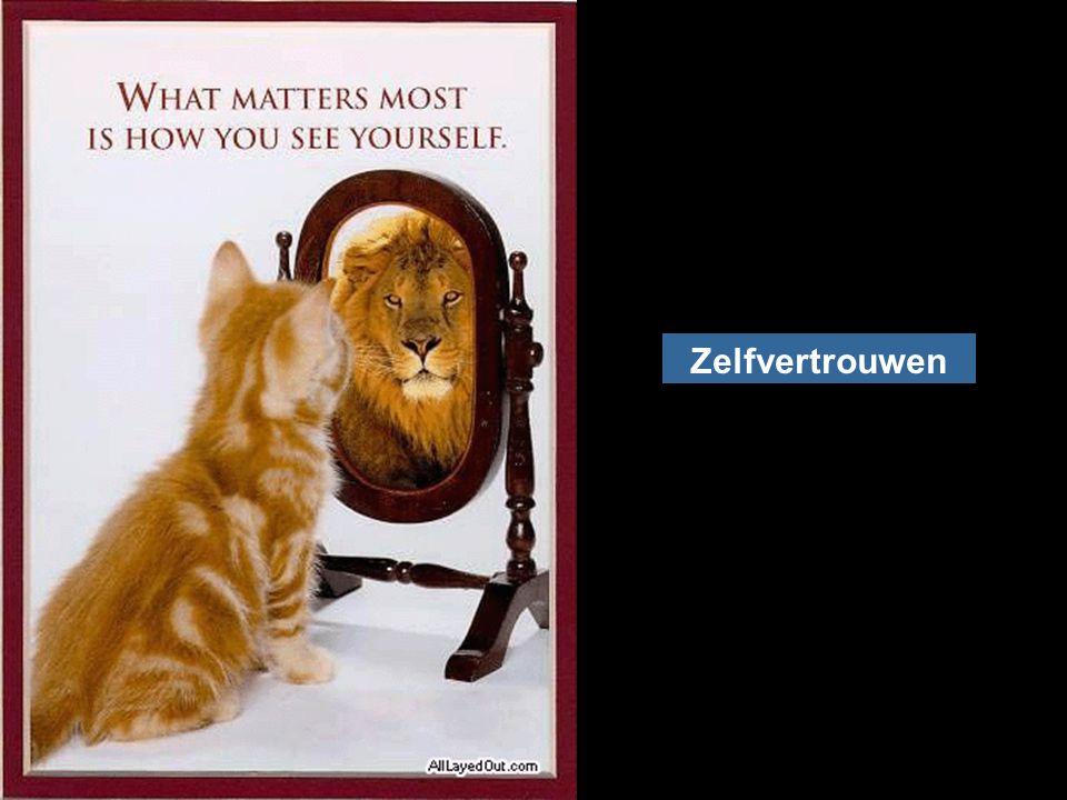 Zelfvertrouwen Vertrouwen wordt verdiend met vele daden en kan met één daad verloren gaan [Socrates].